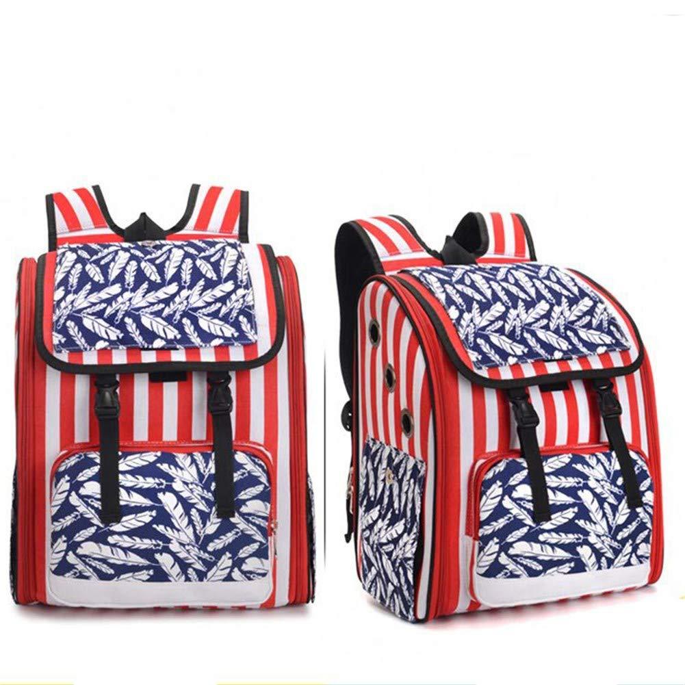 B Pet Online Pet Out Carrying Bag Fashion Breathable Canvas Bag cat Carrier, 33×22×39cm, B