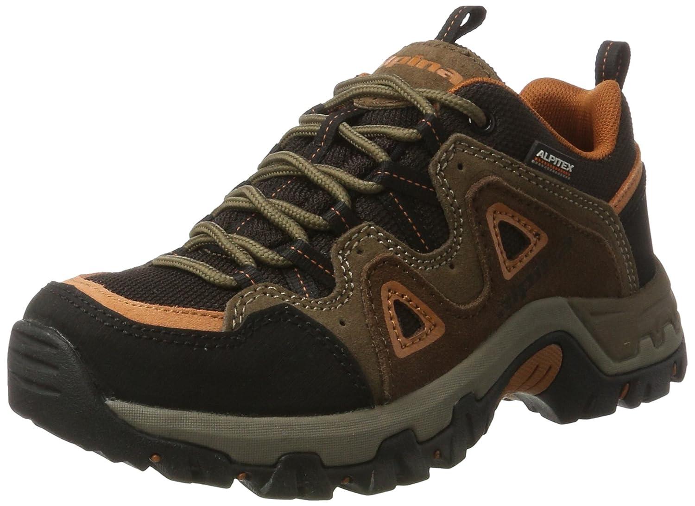 Marron Alpina 680372, Chaussures de Randonnée Basses Mixte Adulte 43 EU