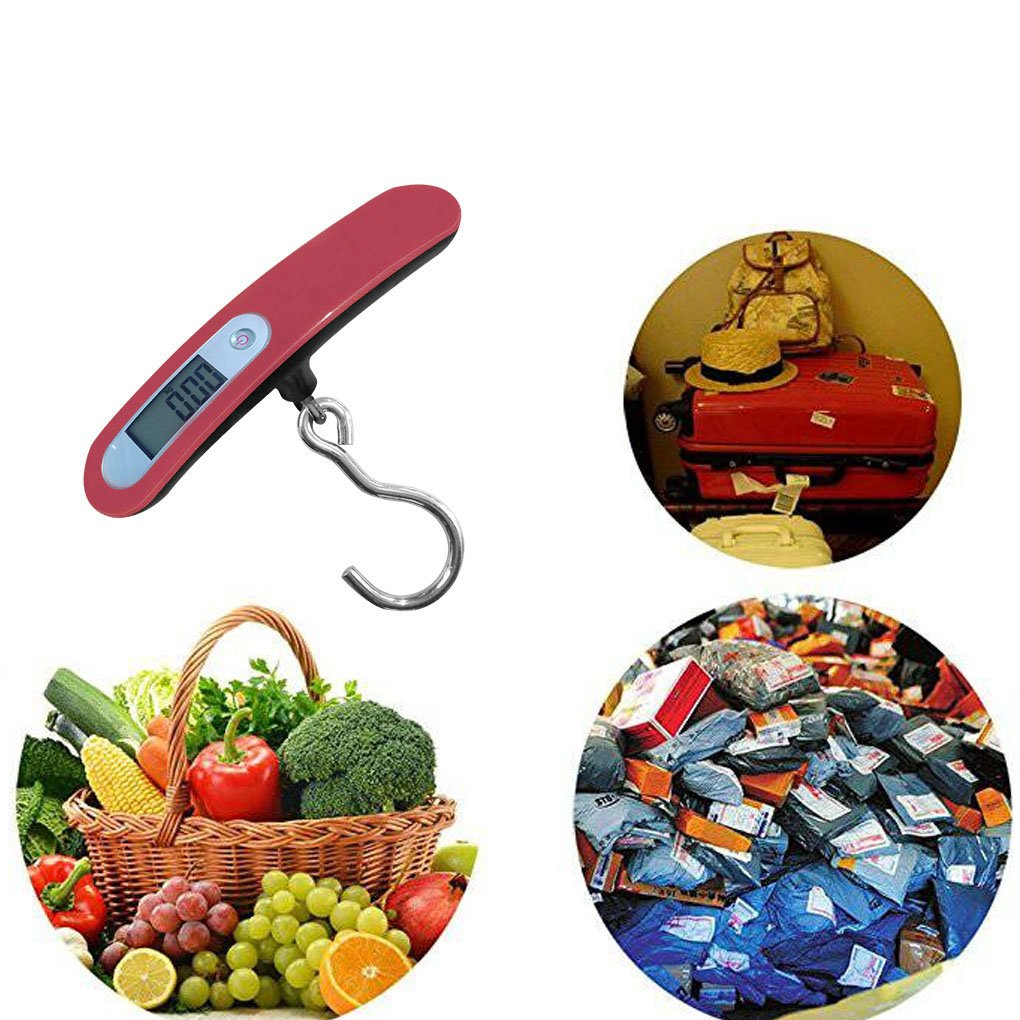 Floridivy WH-A20 50kg x 10g Digital Hook Scales LCD Electronic Hanging Scale Luggage Fishing Weight Steelyard