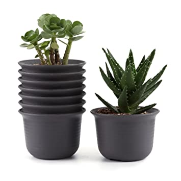 T4u 15cm Plastik Runde Sukkulenten Topfe Kaktus Pflanze Topfe Mini Blumentopfe Braun 8er Set