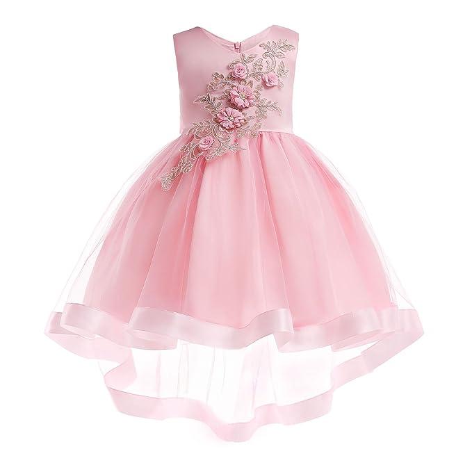Amazon.com: FKKFYY Vestido de flores para niña, vestido de ...
