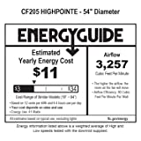 Emerson CF205BS Ceiling Fan with Light and