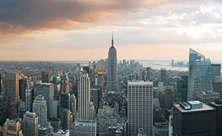 Consalnet Empire State Building New York Skyline Wallpaper Mural