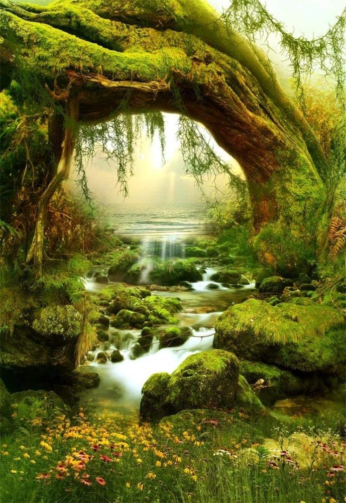 H X2.2 GoEoo 5X7FT Vinyl Photography Background Rill Moss Fairytale Dreamy Forest Stone Magic Trees Cascade Children Girls Adults Portraits Backdrop 1.5 W M Photo Studio Prop