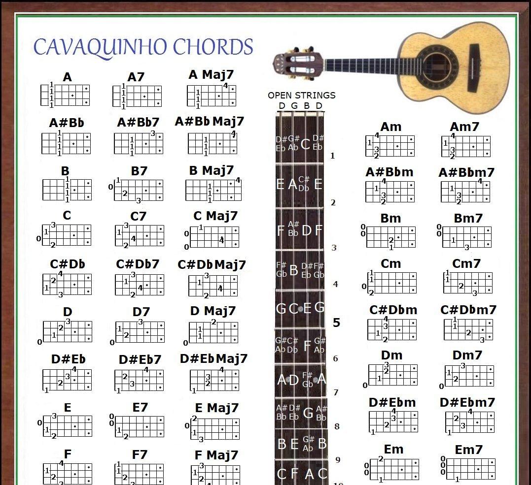 Amazon Cavaquinho Chords Poster Musical Instruments
