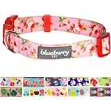 Blueberry Pet Soft & Comfortable Spring Floral Prints Adjustable Dog Collar, 11 Patterns, Matching Leash & Harness Available Separately