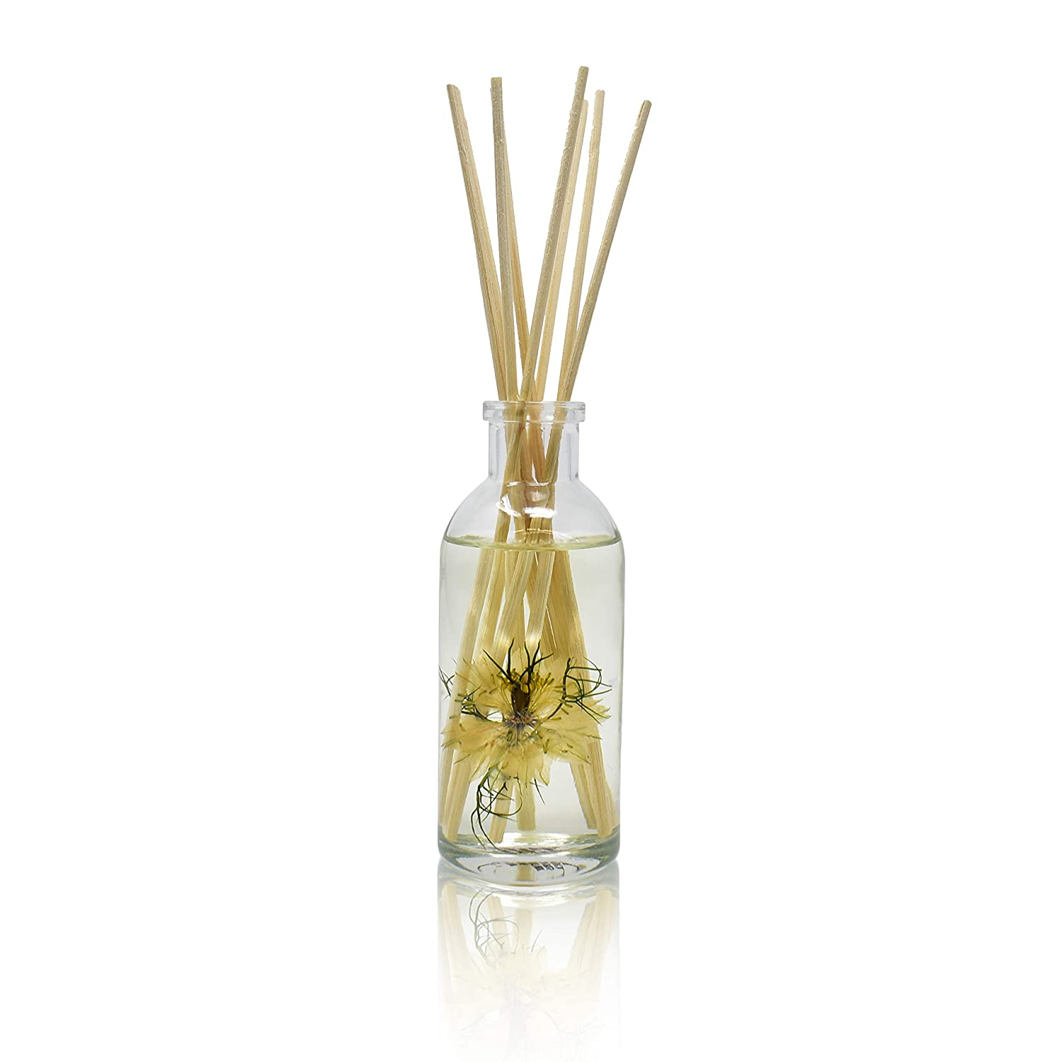 Birchwood /& Sandalwood Urban Naturals Vanilla Woods Reed Diffuser Scent Sticks Gift Set Light Woodsy Scent Made with Essential Oils /& Real Botanical Pieces Smoked Vanilla Bean Tonka Bean