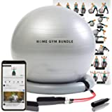 Home Gym Bundle Exercise Ball with 15lb Resistance Bands and Stability Base - Full Body Fitness Workout Equipment…