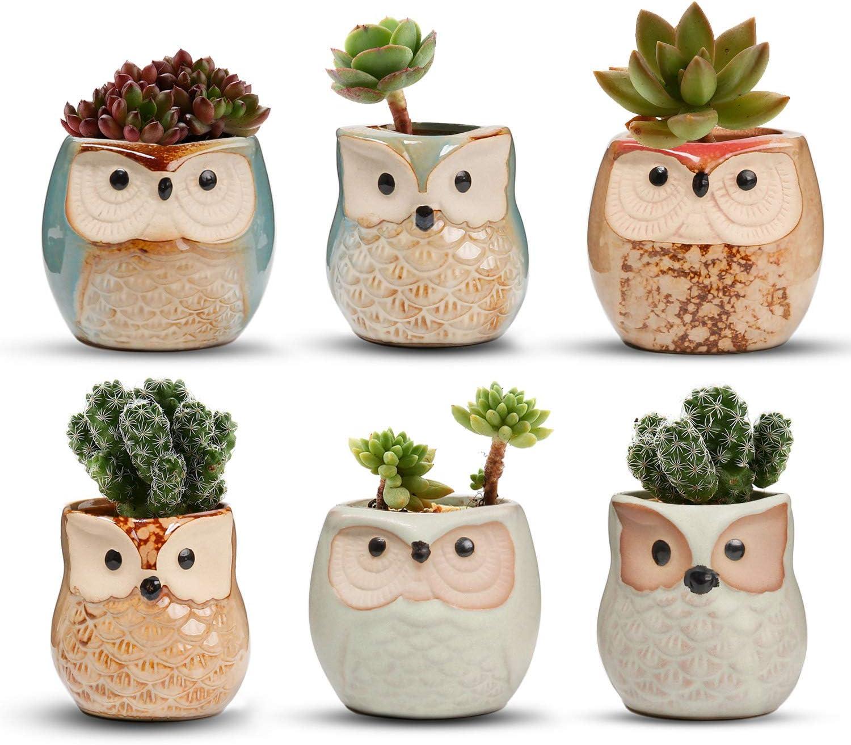 T4U 5.5CM Búho Macetas para Cactus de Cerámica Paquete de 6, Mini Maceteros Pequeños para Suculento Plantas Casa y Jardin Boda Decorativos Interior
