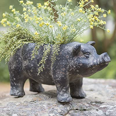 CTW Home Collection Large Pig Planter : Garden & Outdoor