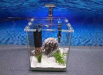 Wave caja Cubo 25 Nano Acuario Completo Acuario Mini acuario + Filtro equipo: Amazon.es: Productos para mascotas