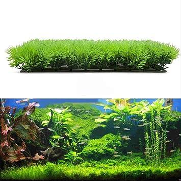 Vegetación artificial para decoración de acuario, de plástico, alta calidad.: Amazon.es: Productos para mascotas
