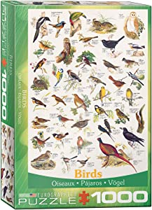 EuroGraphics Birds Fields and Gardens Puzzle (1000-Piece)