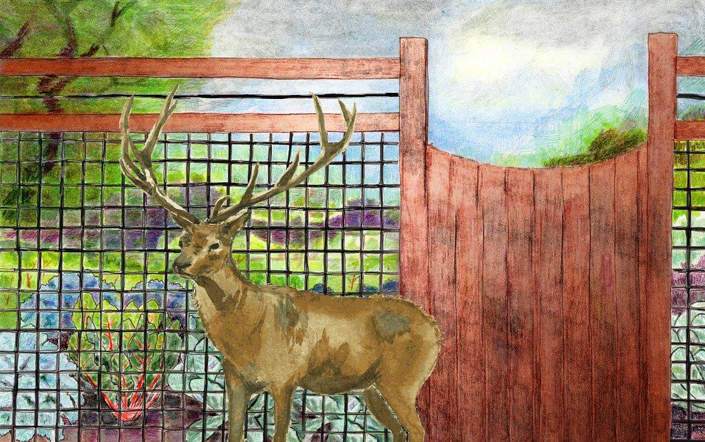 Gardzen 6.8ft x 30ft Heavy Duty Anti Bird Netting, Deer Fence, Pond Net - Protect Your Garden Seedlings Vegetables Fruit Plants Ponds