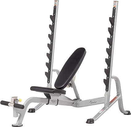 Amazon Com Hoist Fitness Hf 5170 Flat Incline Decline Olympic Bench 7 Position Platinum Sports Outdoors