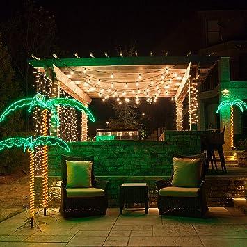 Wintergreen Lighting Lujoso árbol de Palma de la Mano con luz LED ...