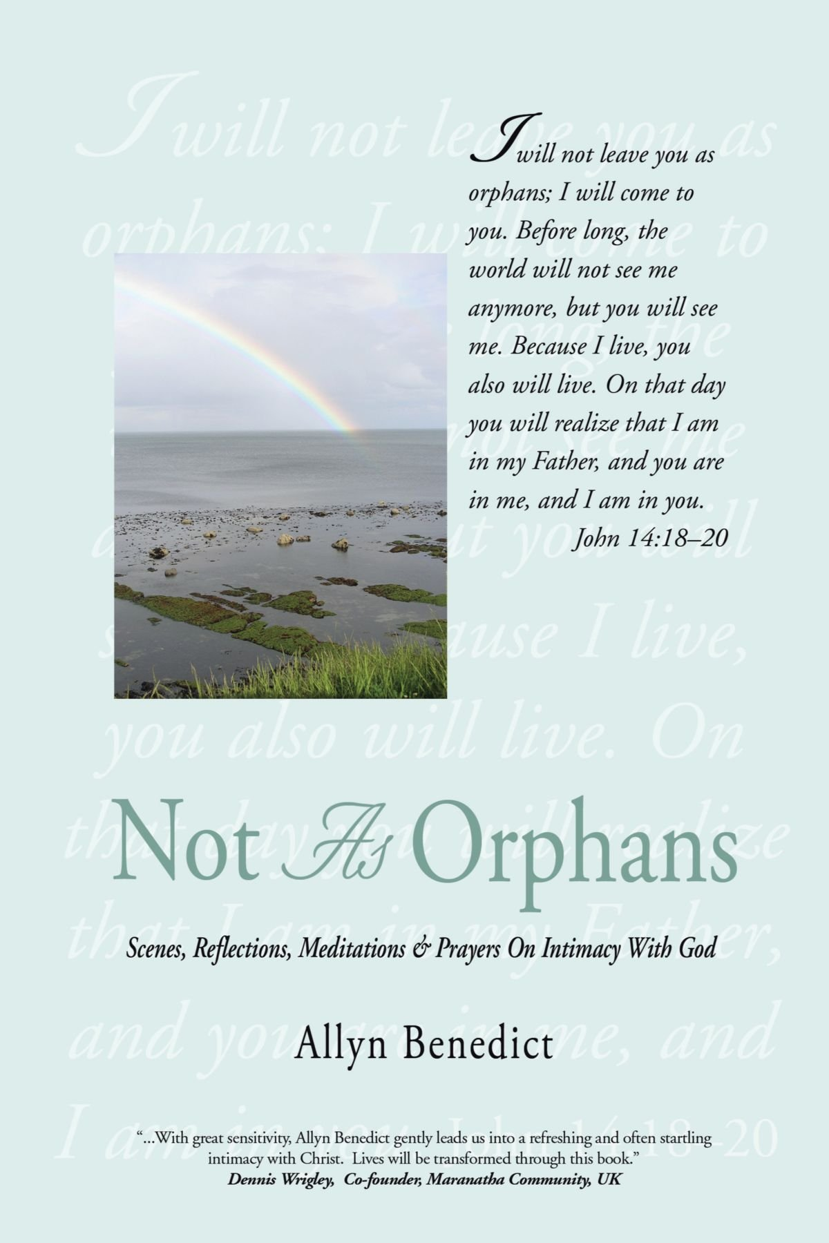 Read Online Not As Orphans: Scenes, Reflections, Meditations & Prayers On Intimacy With God ebook