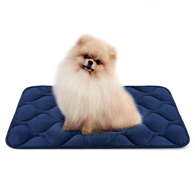 Hero Dog Cama Colchoneta Perro Pequeña Lavable, Cojines para Mascotas Antideslizante Vellón Almohadilla Suave 70x50 cm (Azul S)