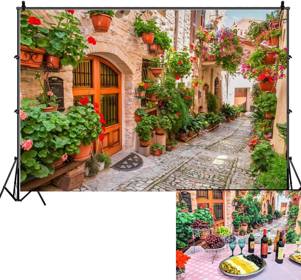 OFILA Italy Backdrop 10x6.5ft Italian Themed Party Photography Background Anniversary Party Background Medieval Village Town Cobblestone Streets Decoration Narrow Alley Photos Props