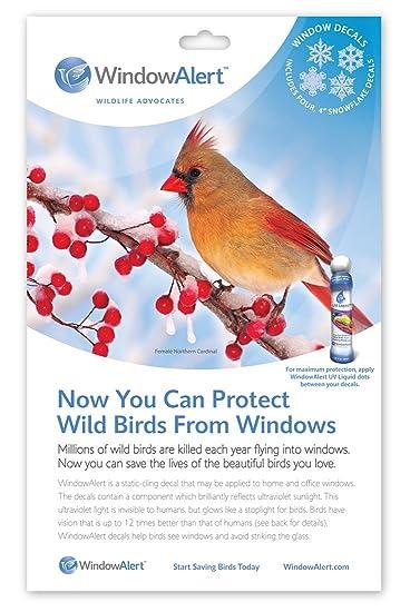 Amazoncom Window Alert Snowflake Decals Window Alert Decals - Window alert hummingbird decals amazon