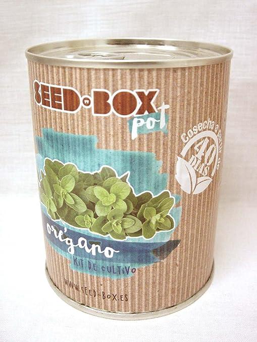 Pocket Garden SeedBox POT - Orégano: Amazon.es: Hogar