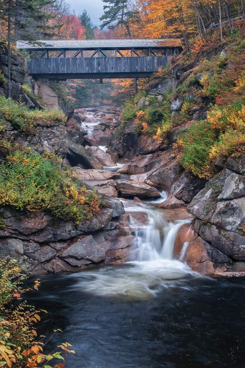 White Mountain Puzzles Covered Bridges, 1000 Piece Jigsaw Puzzle