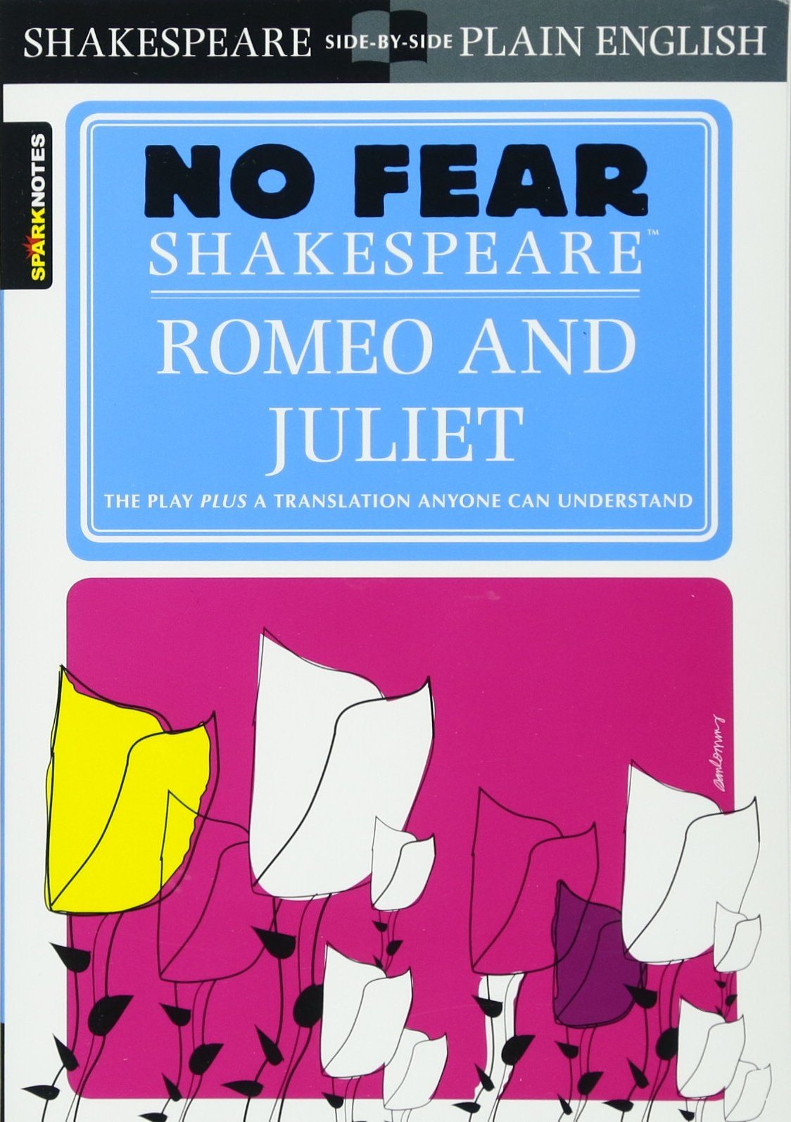 no heir in romeo and juliet Read act 4, scene 5 of shakespeare's romeo and juliet, side-by-side with a  translation into  what, not a word  death is my son-in-law death is my heir.