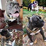 Gold Dog Chain Collar, Stainless Steel Training