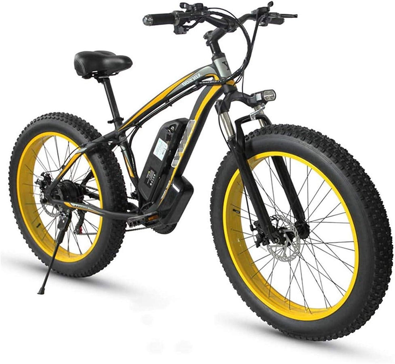 RDJM Bici electrica 48V