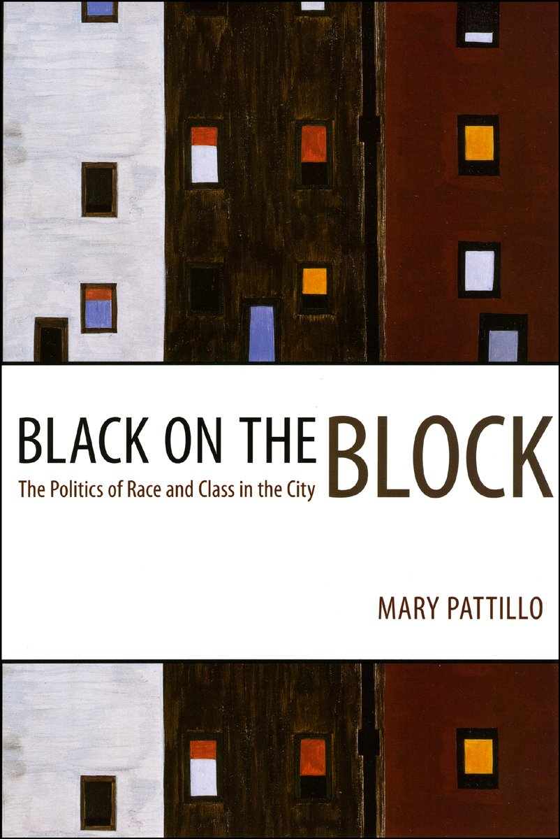 Black on the Block: The Politics of Race and Class in the City PDF