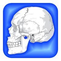 Human Body Facts: Fun Human Anatomy and Physiology Flash Cards app FREE! Learn about Bones, Muscles, Brain, and the Body Parts Atlas of Science Systems for Kids!