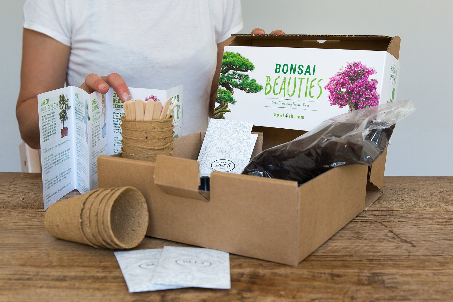 Everything You Need to Grow 5 Stunning... Bonsai Beauties Gift Seed Kit
