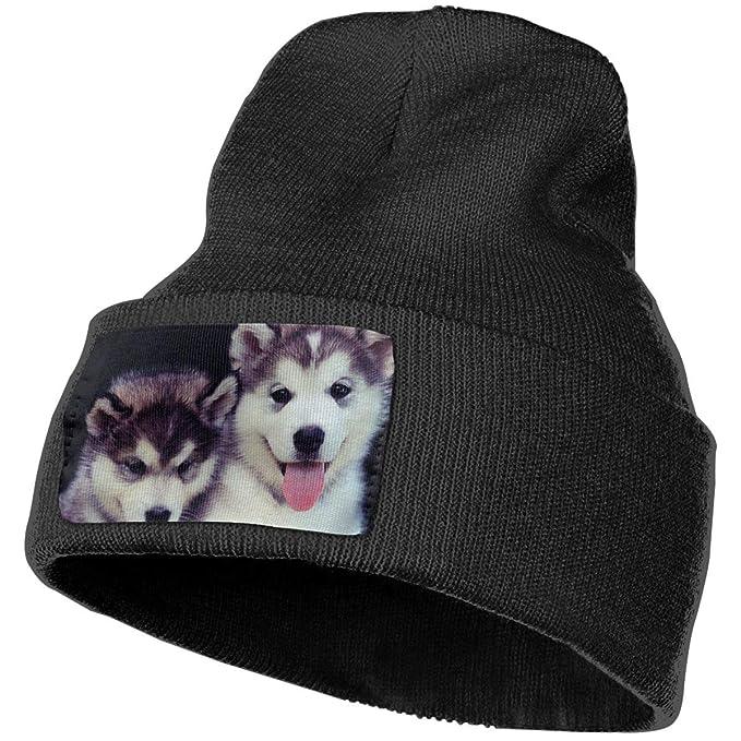 Amazon.com  Knit Hat Cap Siberian Husky Winter Soft Warm Ski Cap ... 16d0fc5dcb5