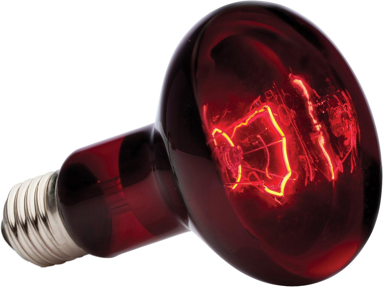 Exo Terra PT2144 Lampada Spot a Infrarossi Ex Heat GL R25//100 W