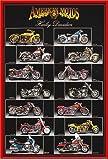 Educational - Bildung Motorräder - Harley Davidson - Chart Bildungsposter Plakat Druck - Maxiposter Version in Englisch - Grösse 61x91,5 cm + Wechselrahmen der Marke Shinsuke® Maxi aus Kunststoff rot - mit Acrylglas-Scheibe.