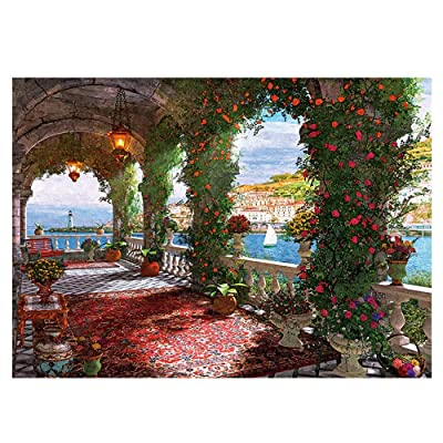 Retrofish Jigsaw Puzzles for Adults 1000 Piece ,Large Puzzle, Rose Corridor: Home & Kitchen