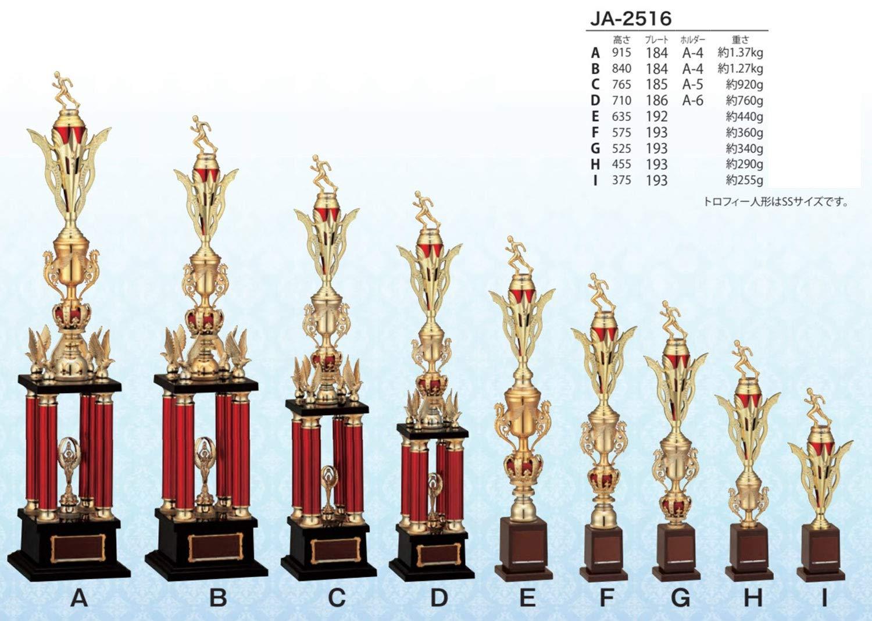 WIN 優勝トロフィー JA-2516 B07HT9H2L6 D:高さ710mm 約760g|10 ゴルフ 男子  D:高さ710mm 約760g