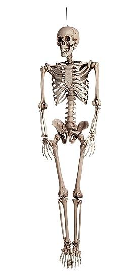 BOLAND BV Esqueleto de Halloween 160 cm, muy real: Amazon.es ...
