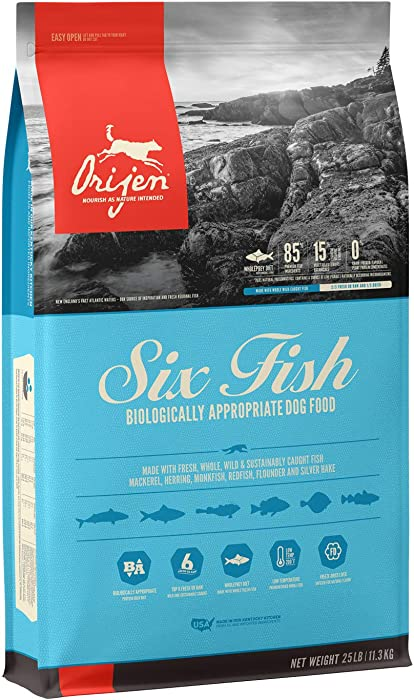 Top 10 Small Dog Food Fish