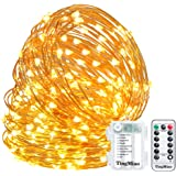 TingMiao LED String Lights Decorative Lights 32.8 Feet 100 LEDs with Control Waterproof Battery Box Copper Wire Lights for Party Festival Ceremony Indoor and Outdoor Fairy Lights (Warm White)