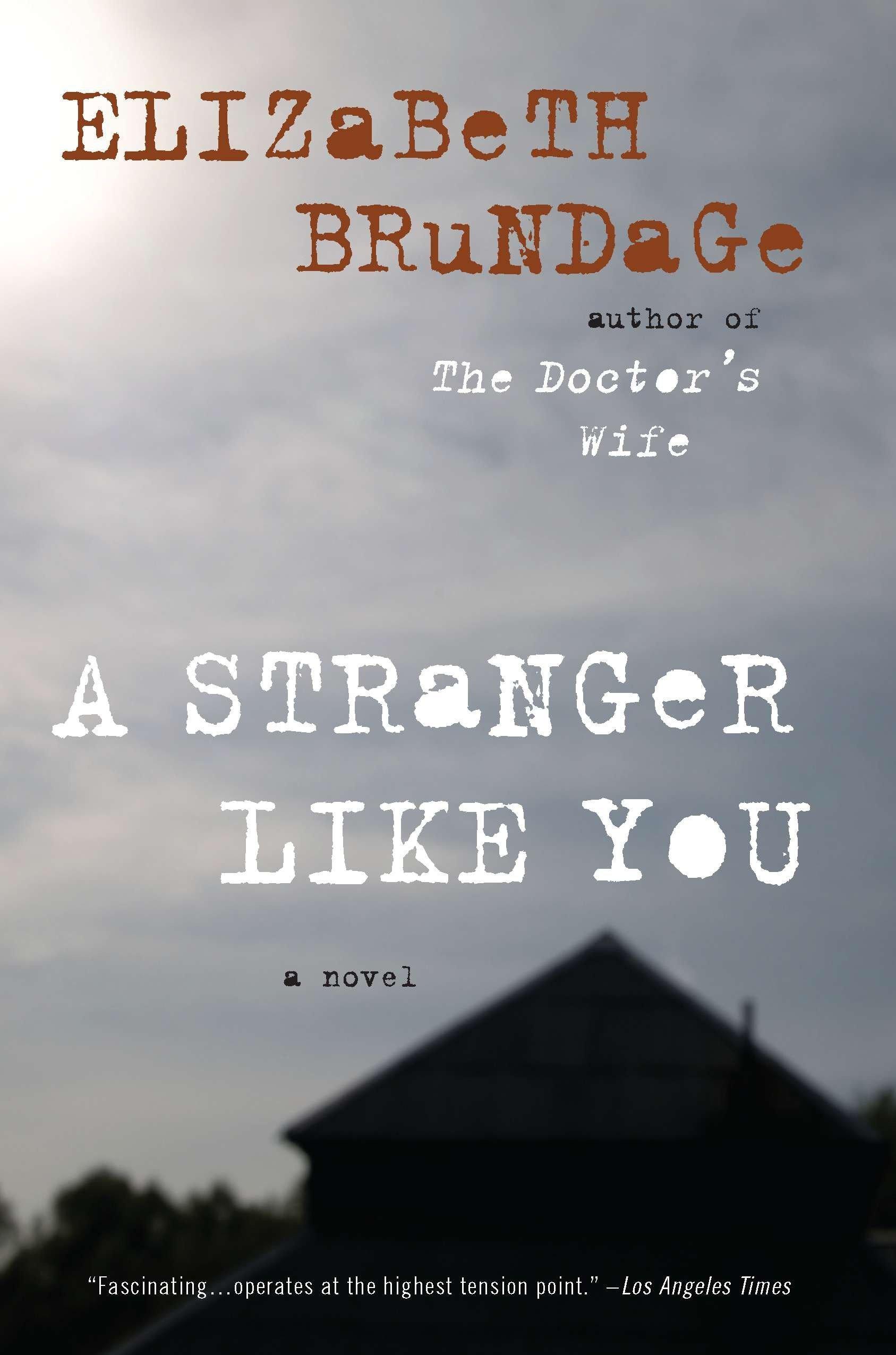 Download A Stranger Like You: A Novel PDF