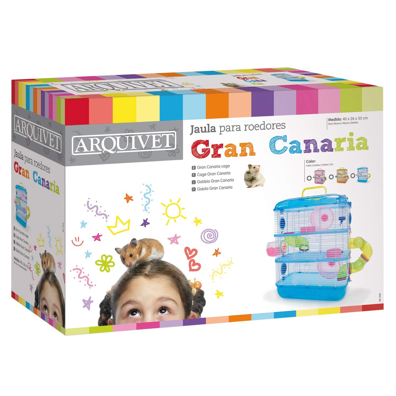 Arquivet Gran Canaria - Jaula, 40 x 26 x 53 cm, Surtido: Amazon.es ...