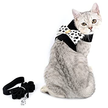 Smille_Lucky_Store - Arnés y Correa para Gato y Cachorro a Prueba de Escape, Cinta de Ante Suave: Amazon.es: Productos para mascotas