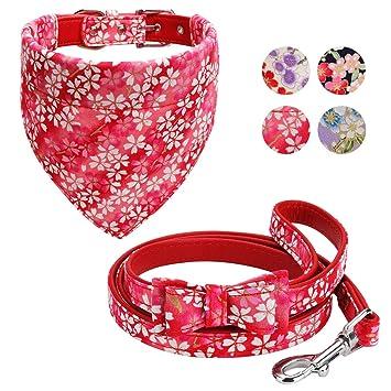 Amazon.com: Vaburs - Collar para perro con bandana y correa ...