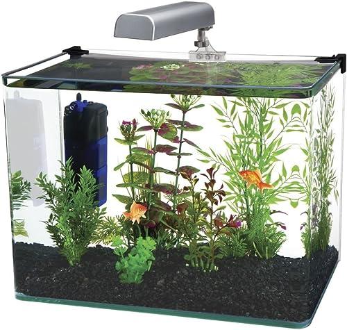 15-gallon-fish-tank