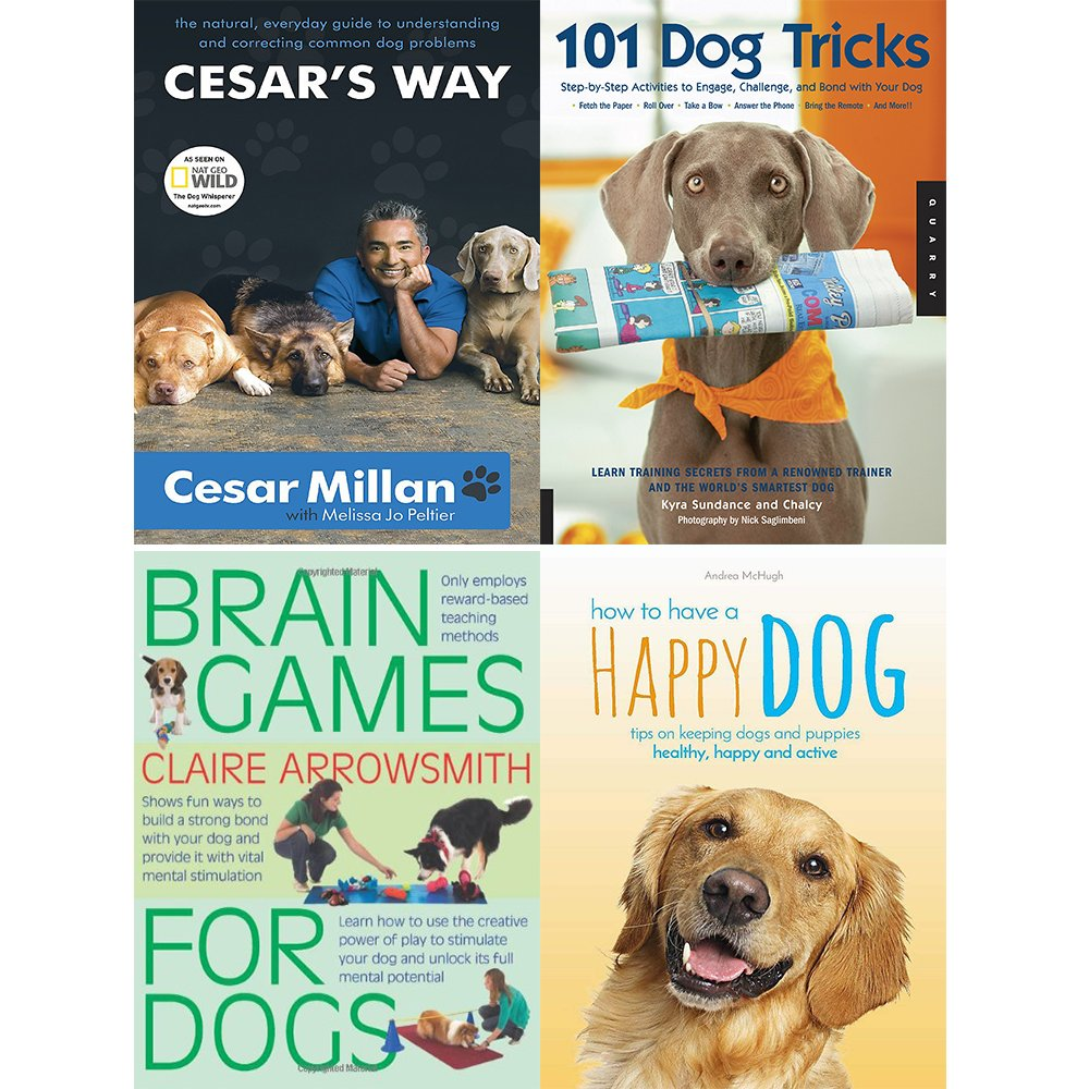 Brain Training 4 Dogs  Obedience Training Commands For Sale New