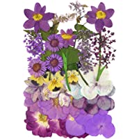 38pcs Natural Dried Flowers Mixed Multi-Color Pressed Flower Mini Rose Hydrangea Daisy for Art Craft DIY Resin Nail Art…