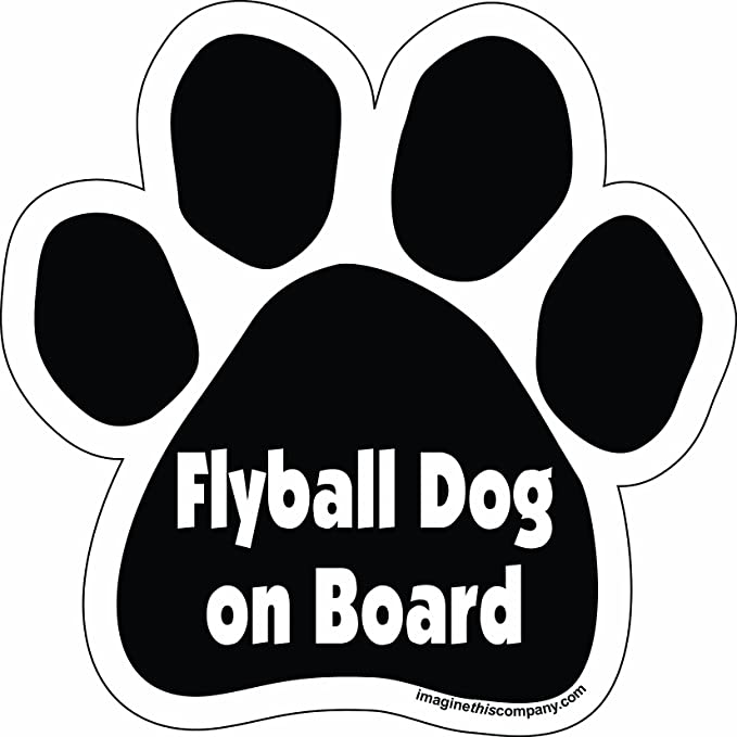 5-1//2-Inch by 5-1//2-Inch Spoiled Shih Tzu on Board Imagine This Paw Car Magnet