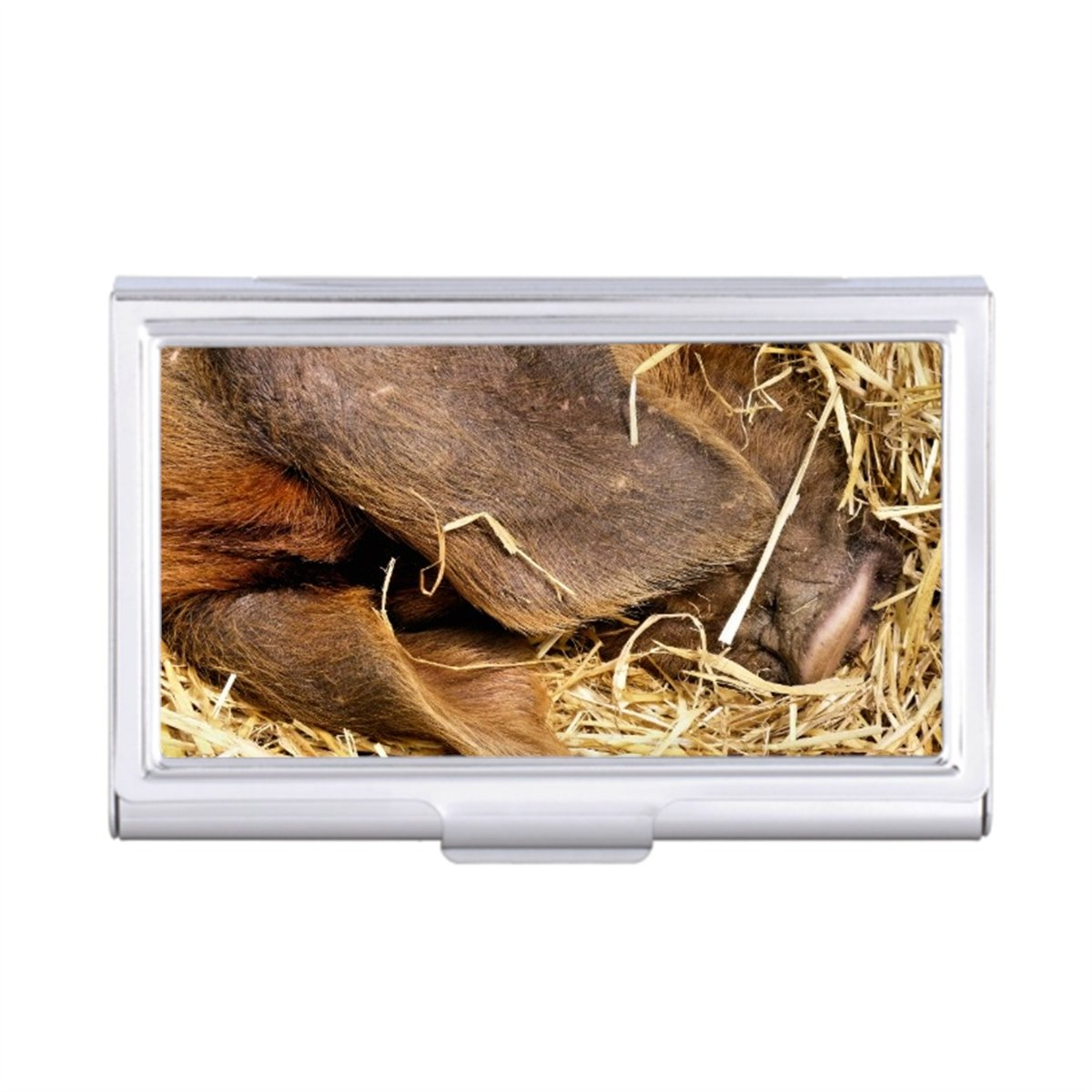 PIGS Business Card Holder Case