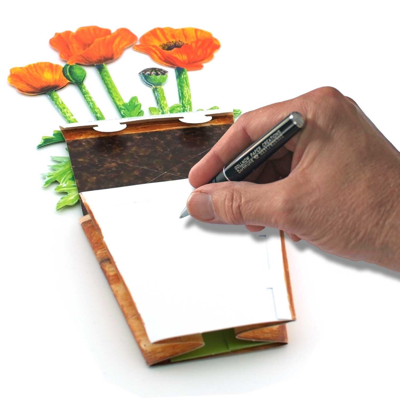 carte pliante 3D avec enveloppe Fleurs de pavot dans un pot de fleurs PAVOT carte de voeux pop-up